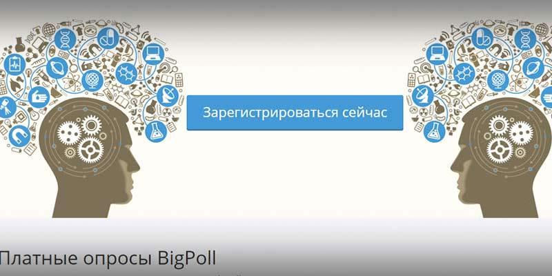 Big Poll